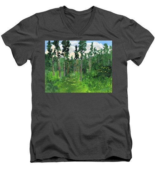 Valley Walk Men's V-Neck T-Shirt