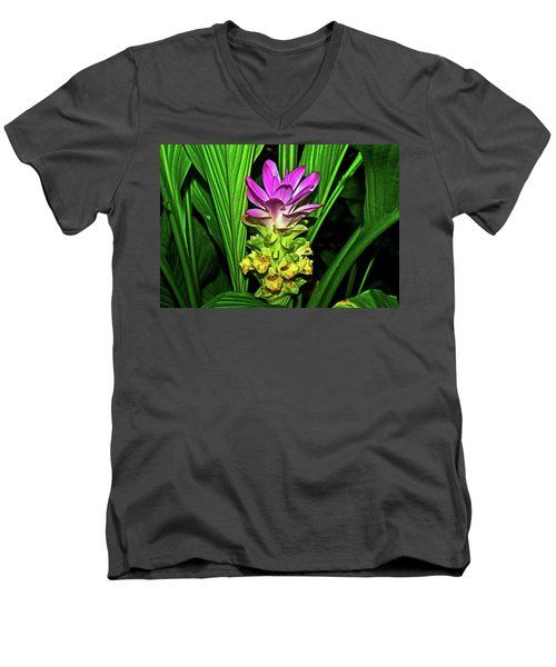 Variegated Hidden Ginger 001 Men's V-Neck T-Shirt