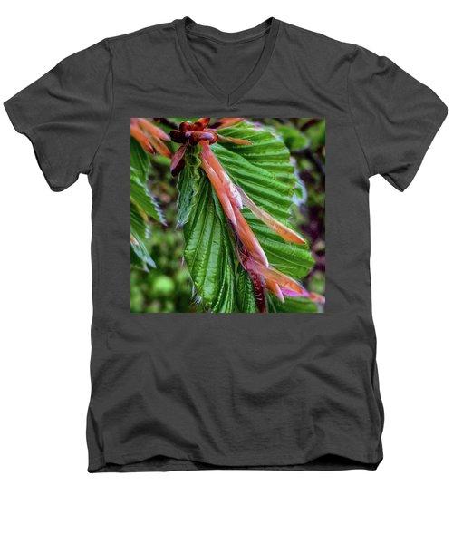 Beech  Men's V-Neck T-Shirt by Majse Tange