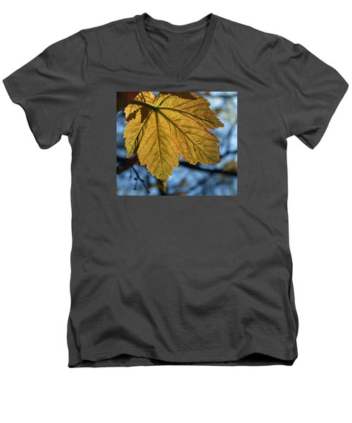 Veinage Men's V-Neck T-Shirt