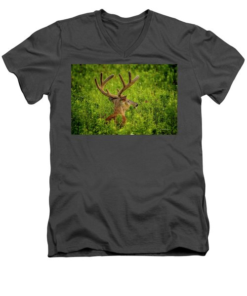 Velvet Eight Men's V-Neck T-Shirt