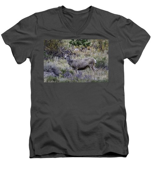 Velvet Mule  Men's V-Neck T-Shirt