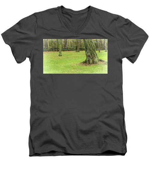 Venerable Trees And A Stone Wall Men's V-Neck T-Shirt