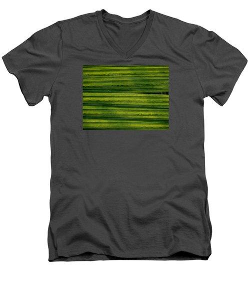 Venetian Blinds Men's V-Neck T-Shirt