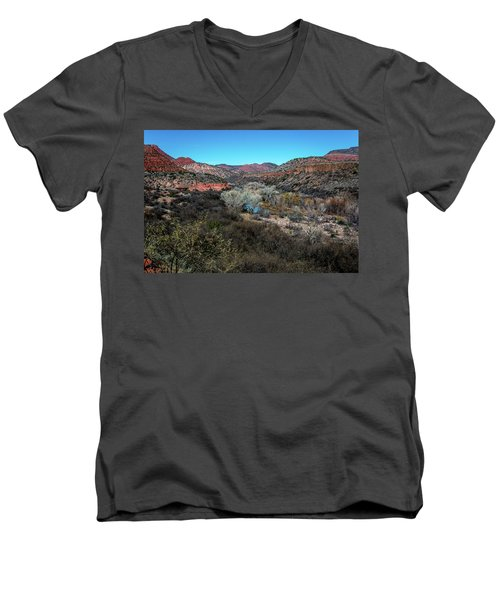 Verde Canyon Oasis Men's V-Neck T-Shirt