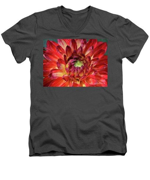 Veriegated Dahlia Beauty Men's V-Neck T-Shirt by Debby Pueschel