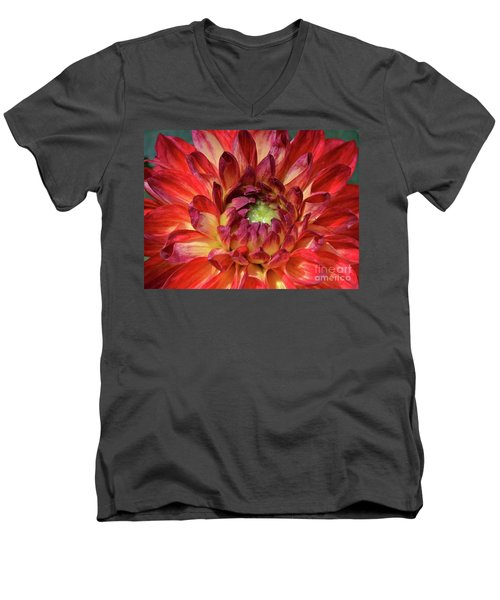 Variegated Dahlia Beauty Men's V-Neck T-Shirt