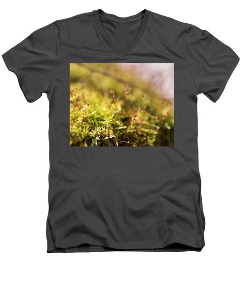 Vernal Impression Men's V-Neck T-Shirt