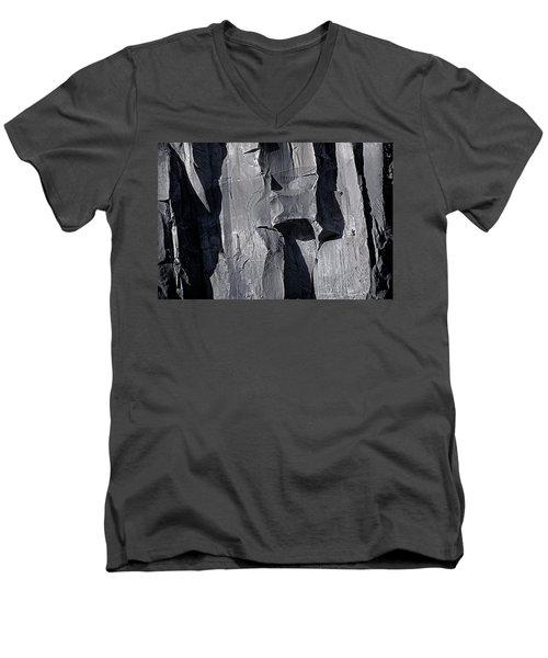 Vertical Trails Men's V-Neck T-Shirt