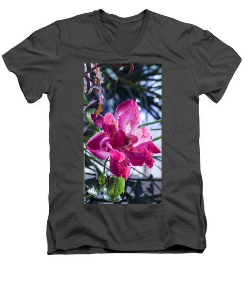 Vibrant Pink Rose Men's V-Neck T-Shirt