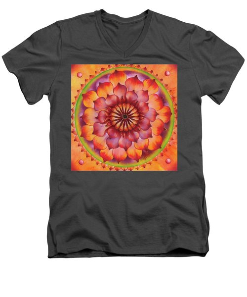 Vibration Of Joy And Life Men's V-Neck T-Shirt