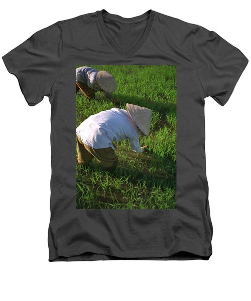 Vietnam Paddy Fields Men's V-Neck T-Shirt