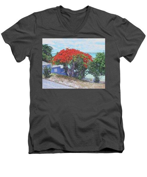 View From Hill Street Men's V-Neck T-Shirt