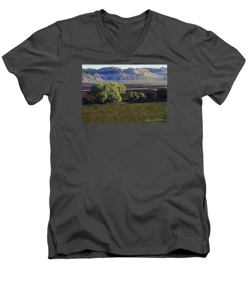 View From Waterman South Men's V-Neck T-Shirt