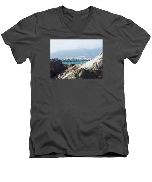 View Of The Inlet Men's V-Neck T-Shirt