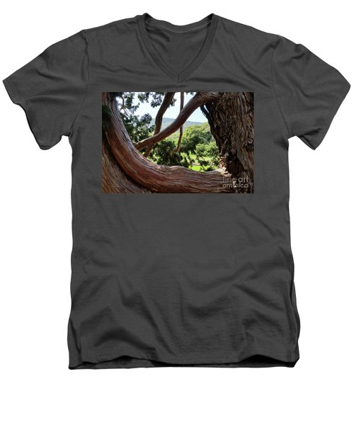 View Through The Tree Men's V-Neck T-Shirt by Carol Lynn Coronios