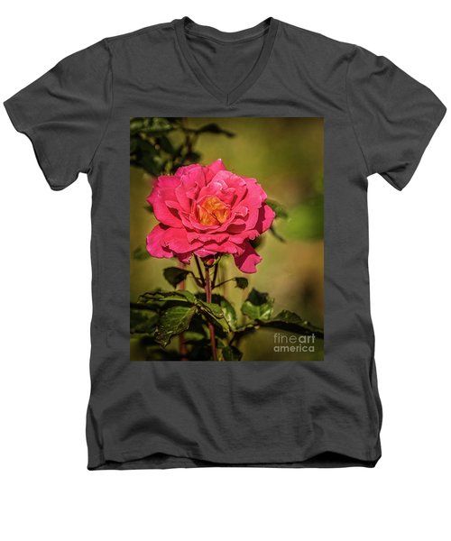 Vignetted  Rose Men's V-Neck T-Shirt by Robert Bales