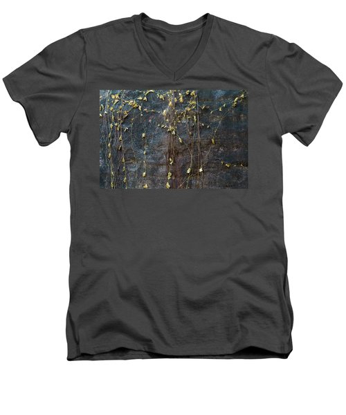 Men's V-Neck T-Shirt featuring the photograph Vines On Rock, Bhimbetka, 2016 by Hitendra SINKAR