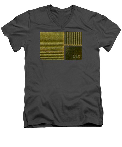 Vineyard From Above Men's V-Neck T-Shirt by Diane Diederich