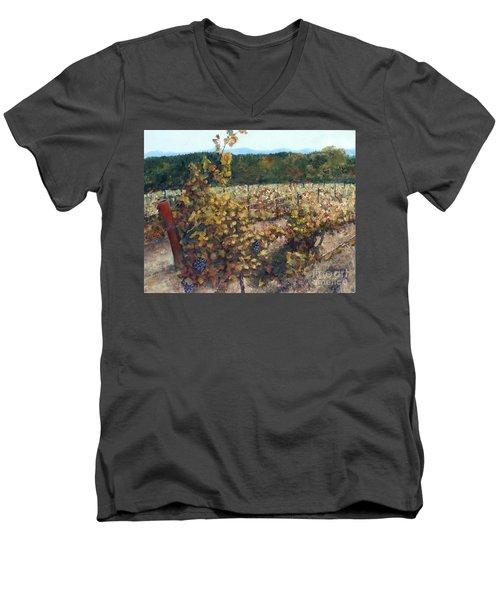 Vineyard Lucchesi Men's V-Neck T-Shirt