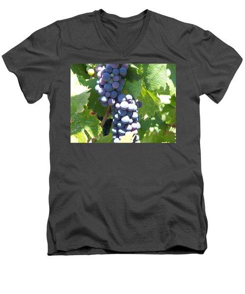 Vino On The Way Men's V-Neck T-Shirt by Pamela Walrath