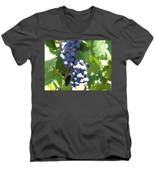 Vino On The Way Men's V-Neck T-Shirt