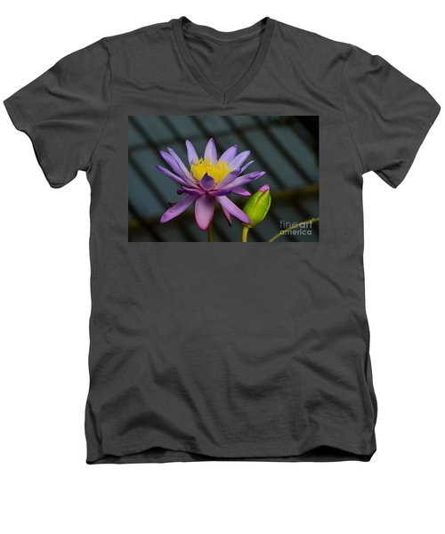 Violet And Yellow Water Lily Flower With Unopened Bud Men's V-Neck T-Shirt