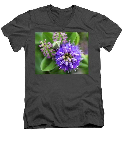 Violet Burst Men's V-Neck T-Shirt