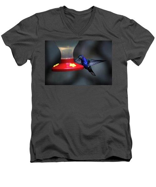 Violet Sabrewing Hummingbird Men's V-Neck T-Shirt