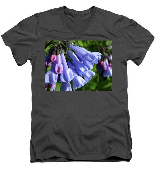 Virginia Blue Bells Men's V-Neck T-Shirt