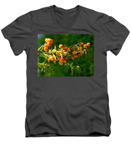 Vivid Berries Men's V-Neck T-Shirt