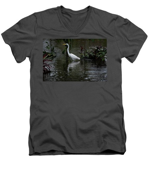 Wading Great Egret Men's V-Neck T-Shirt by James David Phenicie