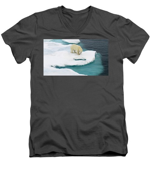 Waiting For Seal Men's V-Neck T-Shirt