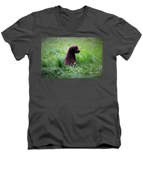 Men's V-Neck T-Shirt featuring the photograph Come Play With Me... by Katy Mei