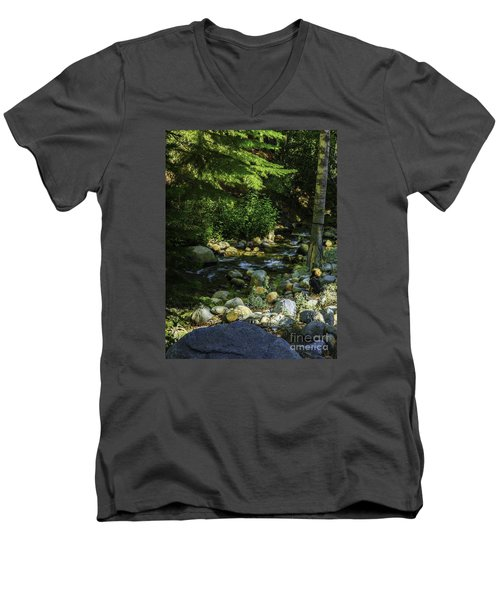Men's V-Neck T-Shirt featuring the photograph Waiting by Nancy Marie Ricketts