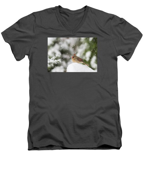Waiting Out The Snow Men's V-Neck T-Shirt