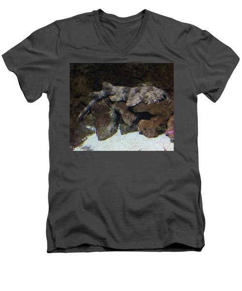Men's V-Neck T-Shirt featuring the photograph Waiting To Eat You - Spotted Wobbegong Shark by Richard W Linford
