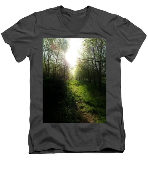 Walk In The Woods Men's V-Neck T-Shirt by Michele Carter