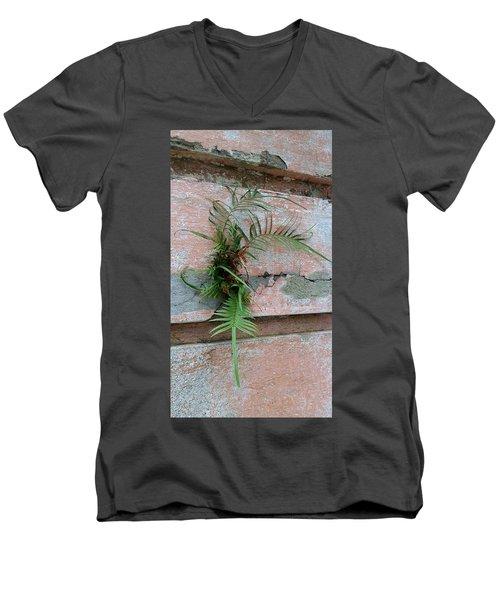 Wall Fern Men's V-Neck T-Shirt