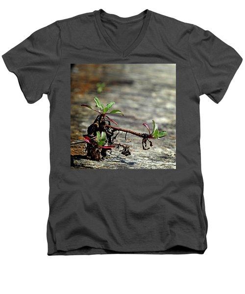 Wall Vegetation Men's V-Neck T-Shirt