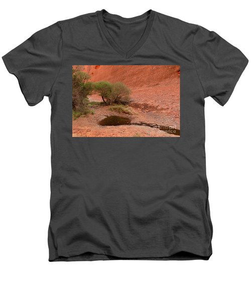 Men's V-Neck T-Shirt featuring the photograph Walpa Gorge 01 by Werner Padarin
