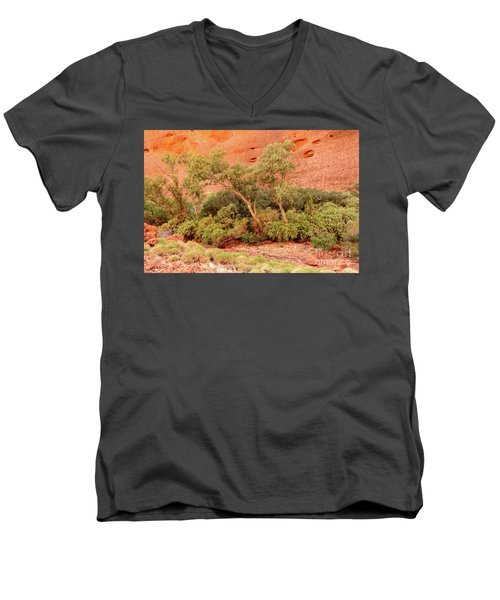 Men's V-Neck T-Shirt featuring the photograph Walpa Gorge 03 by Werner Padarin