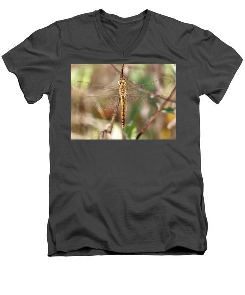 Wandering Glider Men's V-Neck T-Shirt