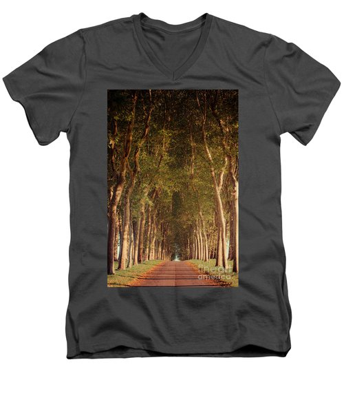 Warm French Tree Lined Country Lane Men's V-Neck T-Shirt