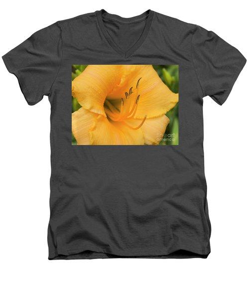 Warm Thoughts Men's V-Neck T-Shirt
