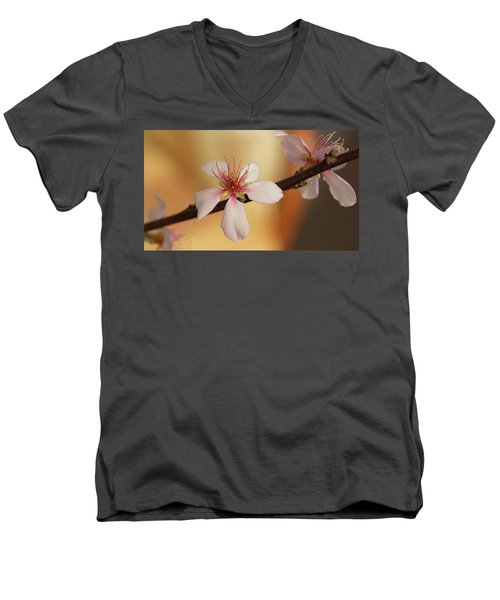 Warmth Of Hope. Men's V-Neck T-Shirt