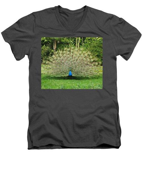 Warwick Castle Peackock Men's V-Neck T-Shirt