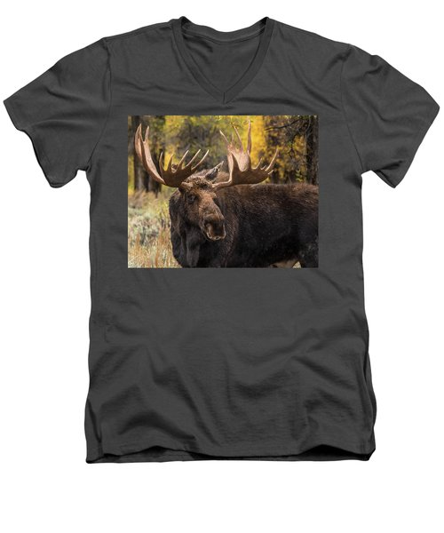 Washakie In The Autumn Beauty Men's V-Neck T-Shirt