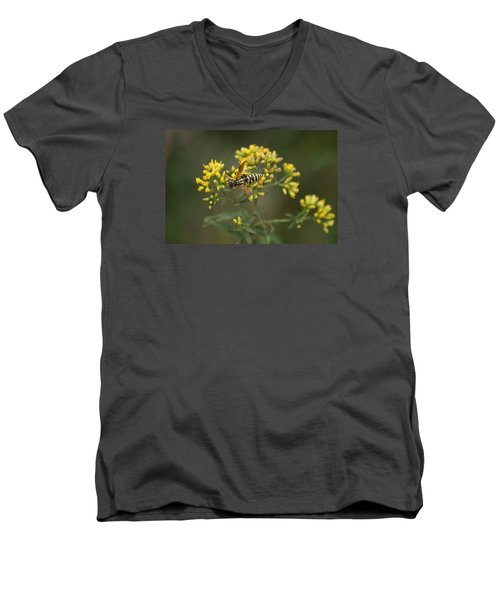 Men's V-Neck T-Shirt featuring the photograph Wasp by Heidi Poulin