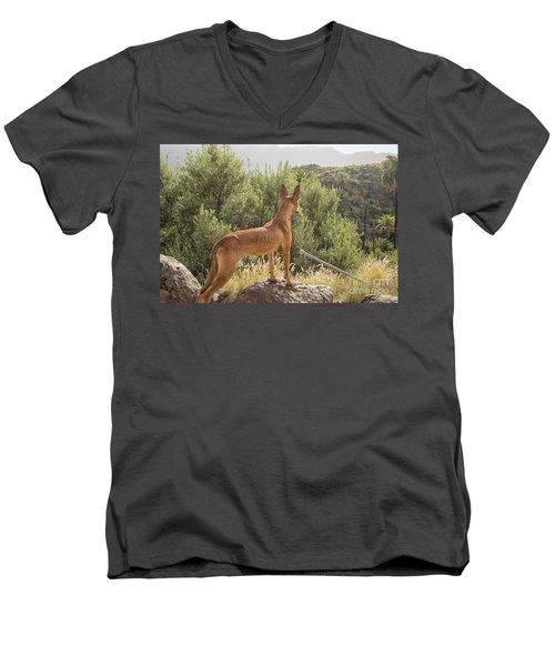 Watchful Dog Men's V-Neck T-Shirt
